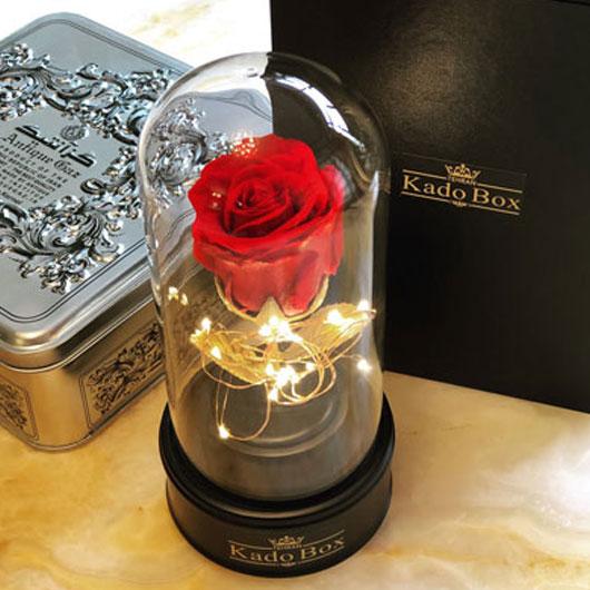 جعبه گل ماندگار موزیکال