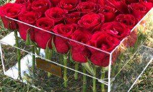ارسال باکس گل به ایران