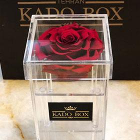 باکس گل استوانه ای