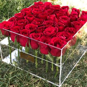 باکس گل رز هلندی 36 شاخه در جعبه پلکسی ( شیشه ای )
