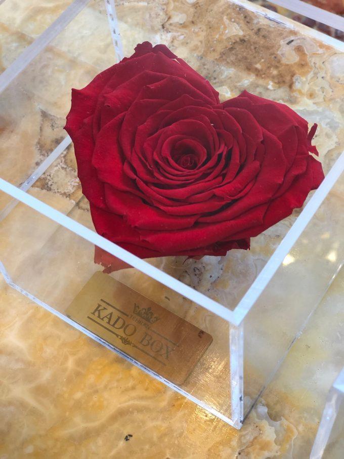 رز جاودان قلب برند RoseAmor