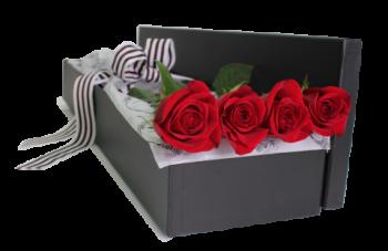باکس گل رز 4 شاخه در آمل
