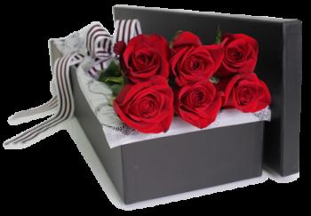باکس گل رز 6 شاخه در آمل