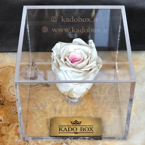 خرید رز جاودان سفید صورتی کادو باکس برند رزامور RoseAmor